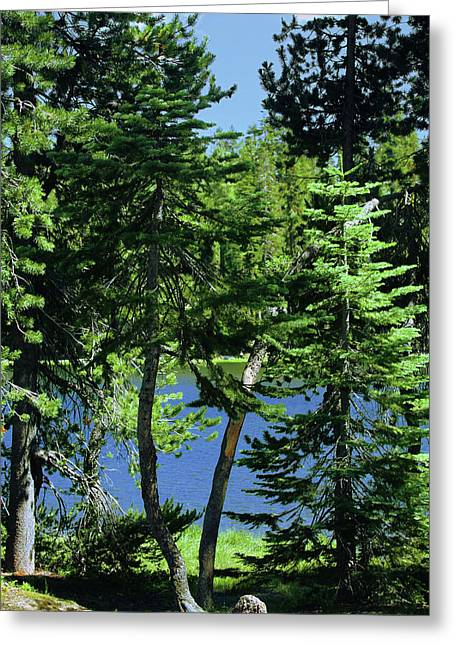 Harmony In Green And Blue - Manzanita Lake - Lassen Volcanic National Park Ca Greeting Card by Christine Till