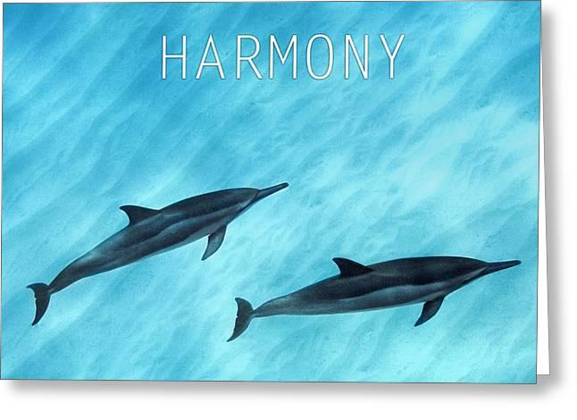 Harmony. Greeting Card