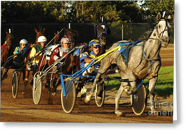 Harness Racing 11 Greeting Card by Bob Christopher