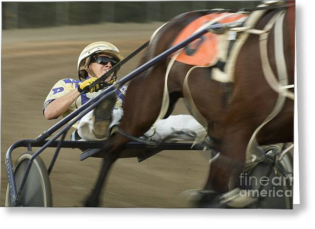 Harness Racing 8 Greeting Card by Bob Christopher