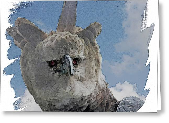 Harpy Eagle Portrait Greeting Card by Larry Linton
