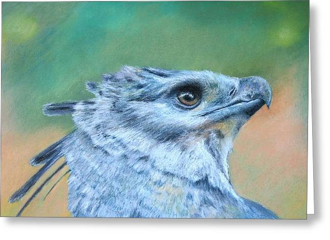 Harpy Eagle Two Greeting Card