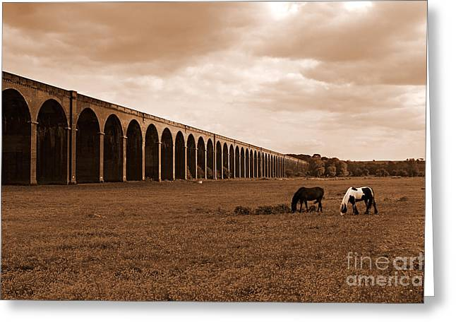 Harringworth Viaduct And Horses Grazing Greeting Card by Louise Heusinkveld