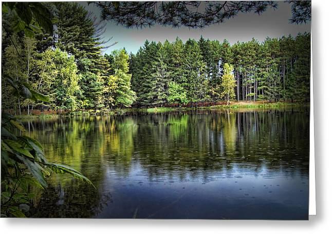 Hartman Creek State Park Greeting Card by Lauren Radke