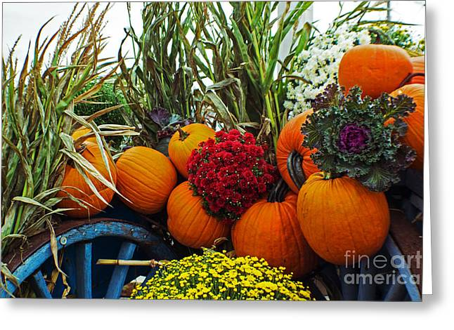 Harvest Bounty Greeting Card