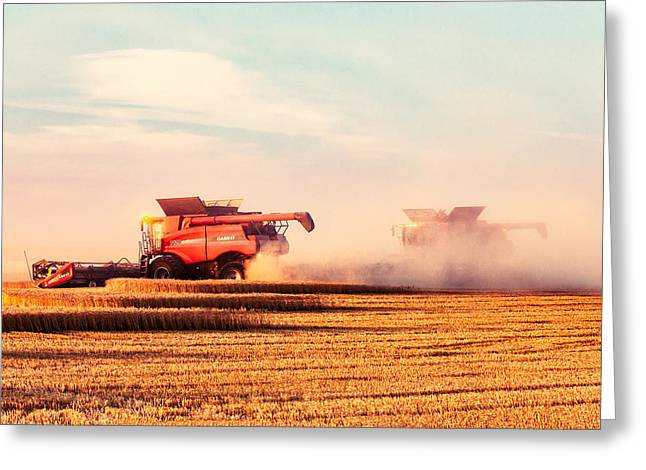 Harvest Dust Greeting Card