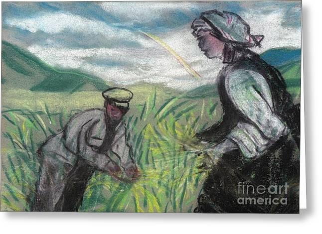 Harvest Greeting Card by Duygu Kivanc