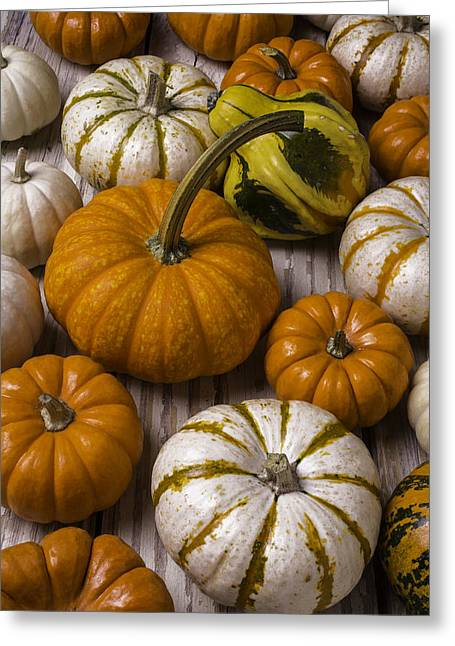 Harvest Fall Still Life Greeting Card by Garry Gay