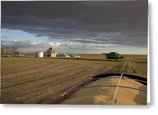Harvest Memories Greeting Card by Dylan Punke