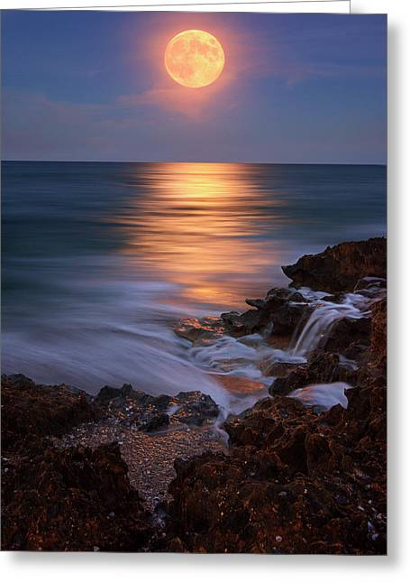 Greeting Card featuring the photograph Harvest Moon Rising Over Beach Rocks On Hutchinson Island Florida During Twilight. by Justin Kelefas