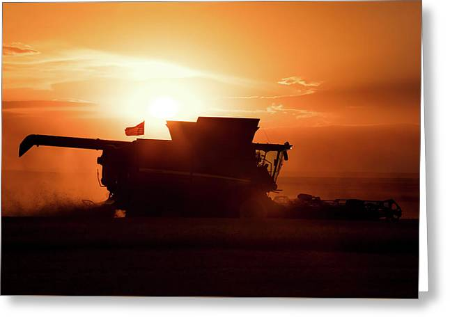 Harvest Silhouette Greeting Card by Todd Klassy