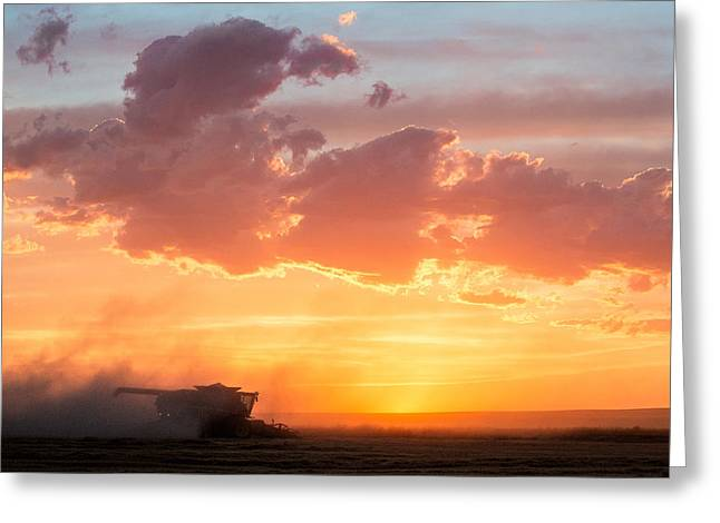 Harvest Sunset Greeting Card by Todd Klassy