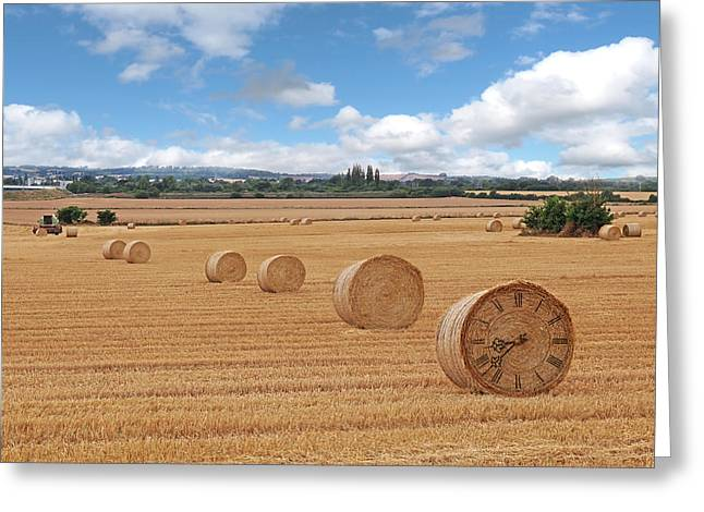 Harvest Time Greeting Card by Gill Billington