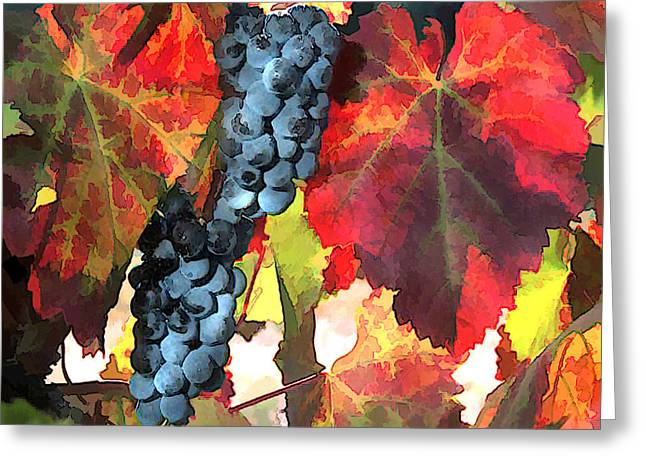 Sparkling Wines Digital Greeting Cards - Harvest Time Grapes and Leaves Greeting Card by Elaine Plesser