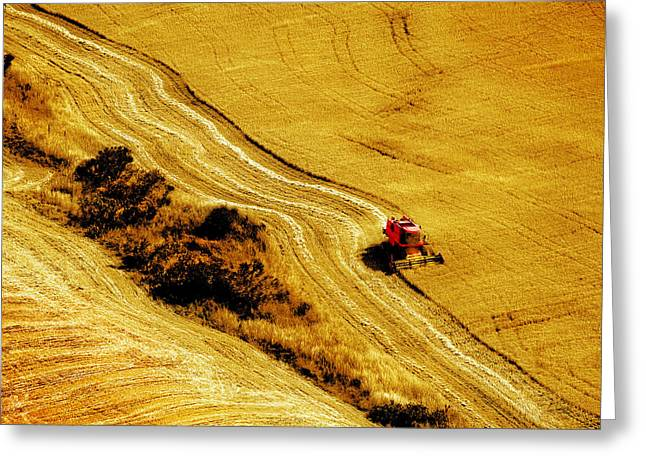 Harvesting The Crop Greeting Card by Mal Bray