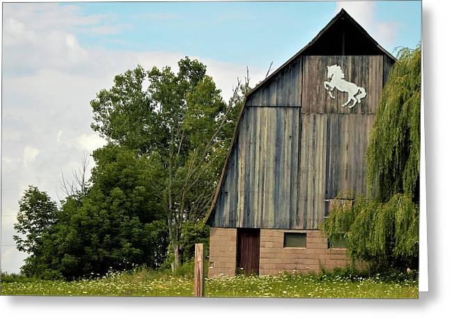 0017 - Hassler Lake Road Horse Barn Greeting Card