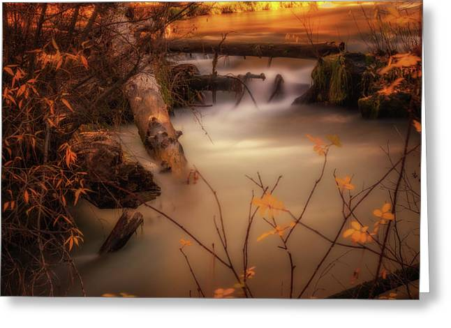 Hat Creek In Gold Greeting Card