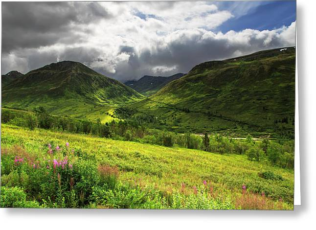 Hatcher's Valley Greeting Card by Ed Boudreau