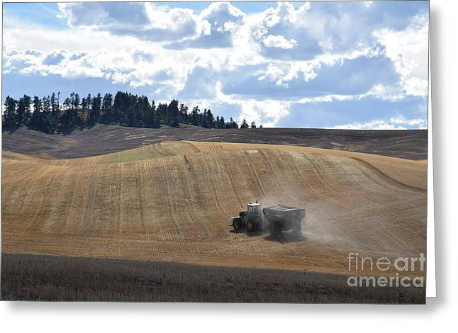 Hauling The Harvest From The Fields. Greeting Card