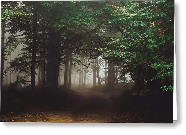 Haunted Forest #2 Greeting Card