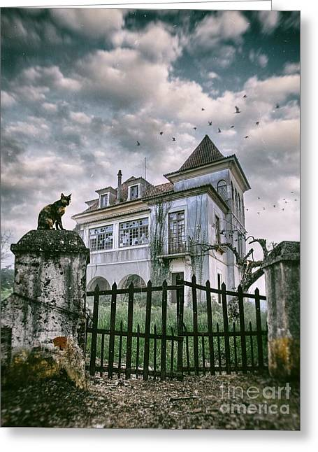 Haunted House And A Cat Greeting Card by Carlos Caetano