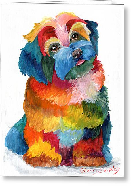 Hava Puppy Havanese Greeting Card by Sherry Shipley