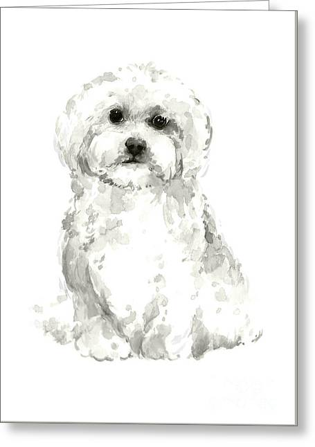 Maltese, Havanese Custom Dog Illustration, White Dog Art Print, Maltese Watercolor Painting Greeting Card by Joanna Szmerdt