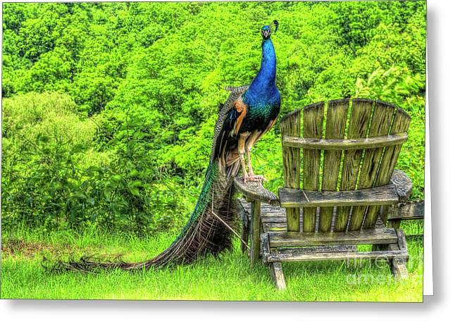 Have A Seat Greeting Card by Jason Barr