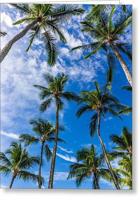 Hawaii Palms On The Island Of Kauai Greeting Card by Donnie Whitaker