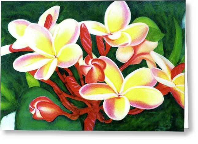 Hawaii Tropical Plumeria Flower #205 Greeting Card by Donald k Hall