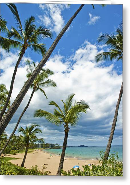 Hawaiian Shore On Maui 14 Greeting Card