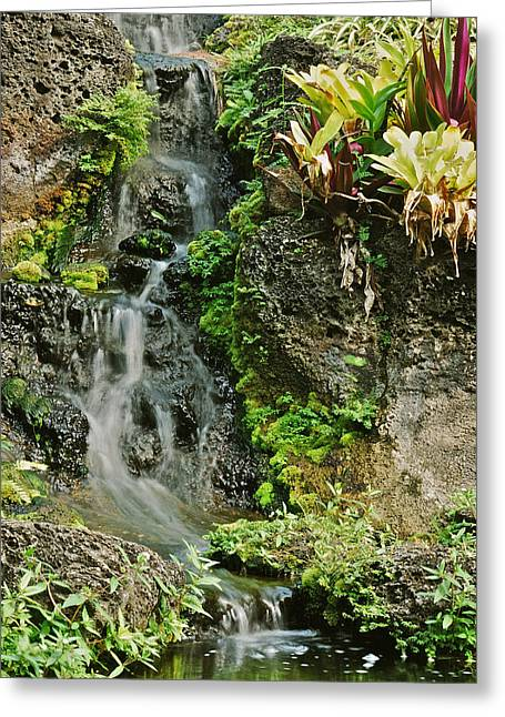 Hawaiian Waterfall Greeting Card by Michael Peychich