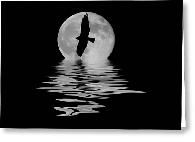 Greeting Card featuring the photograph Hawk In The Moonlight 2 by Shane Bechler