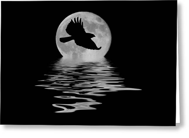 Greeting Card featuring the photograph Hawk In The Moonlight by Shane Bechler