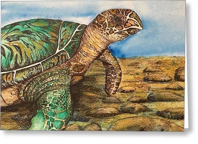 Hawkbilled Sea Turtle Greeting Card