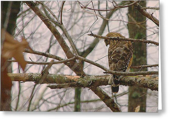 Branch Manager Greeting Card by Dennis Baswell