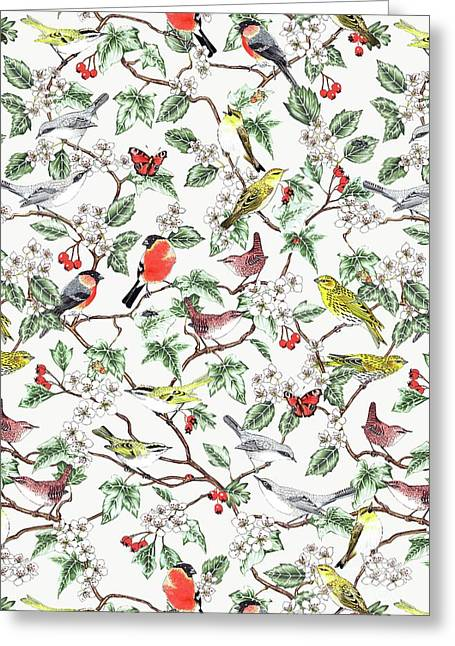 Hawthorn Greeting Card by Jacqueline Colley