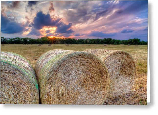 Hay Bales At Sunset Greeting Card by Tim Stanley