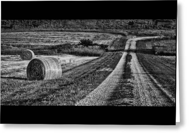 Hay Bales - Country Road Greeting Card by Nikolyn McDonald