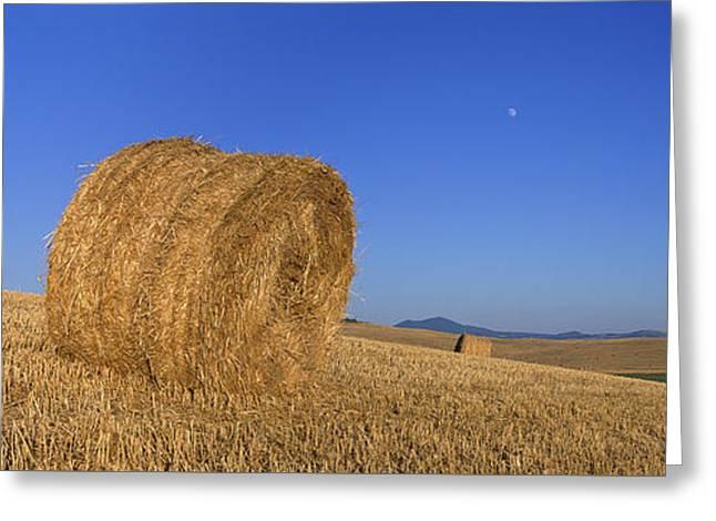Hay Bales In Tuscany Greeting Card