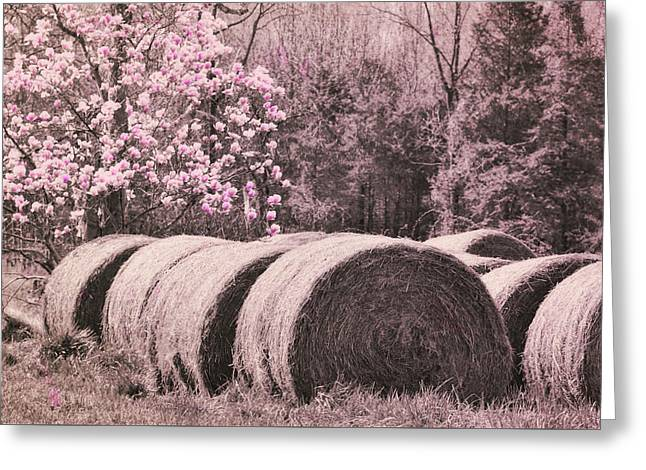 Hay Bales Greeting Card by JAMART Photography
