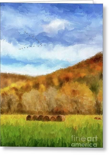 Hay Bales Greeting Card by Lois Bryan