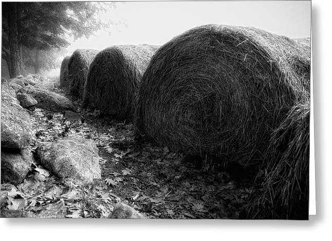 Hay Bales Paxton Ma Greeting Card by Richard Danek