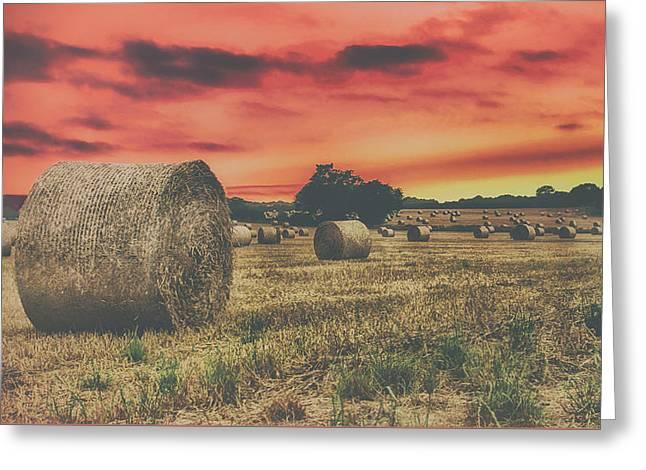 Hay Bales Sunset Greeting Card