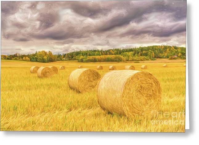 Hay Bales Greeting Card by Veikko Suikkanen