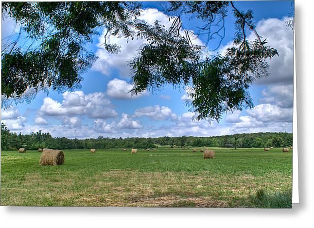 Hay Field In Summertime Greeting Card by Douglas Barnett
