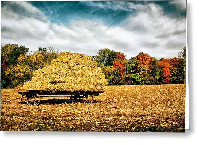 Hay Harvest  Greeting Card by Carolyn Derstine