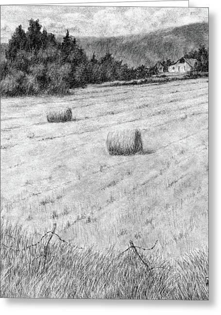 Hay Harvest Greeting Card by David King