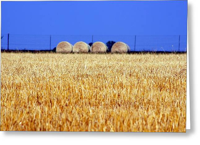 Hay Hay Greeting Card