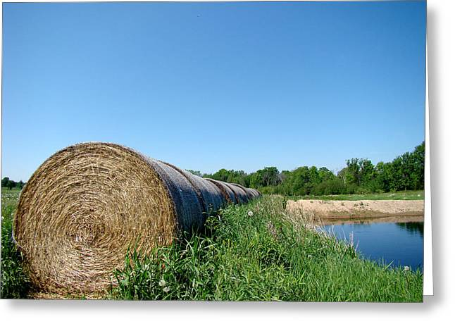 Hay Roll Greeting Card by Todd Zabel